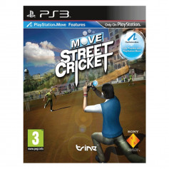 Ps3 Move Street Cricket Pre Owned